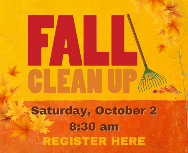 fall clean up_web